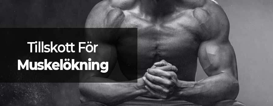 Muskelökning