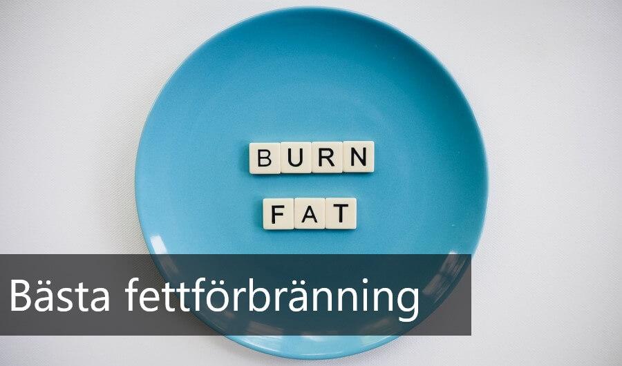 bästa fettförbränning just nu
