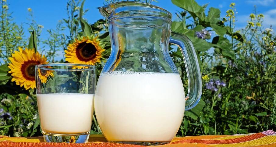 aminosyror i mjölk