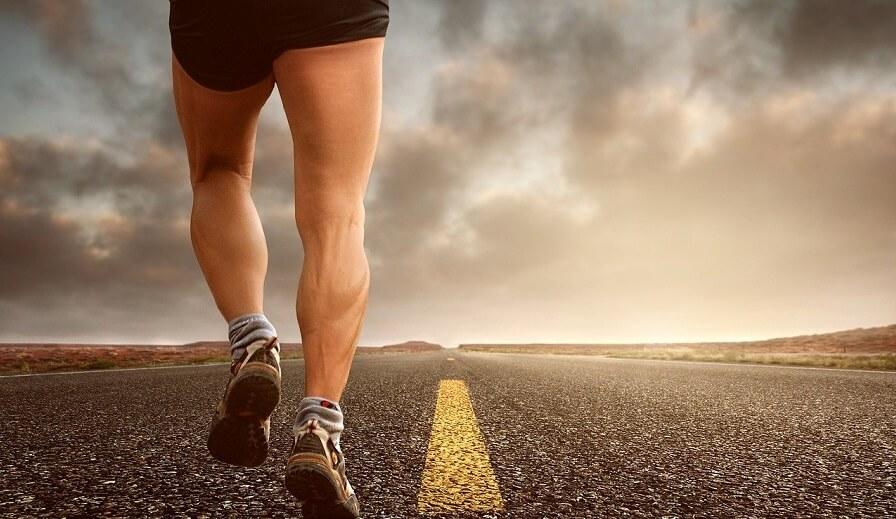 uthållighet och minska muskelnedbrytning med hmb